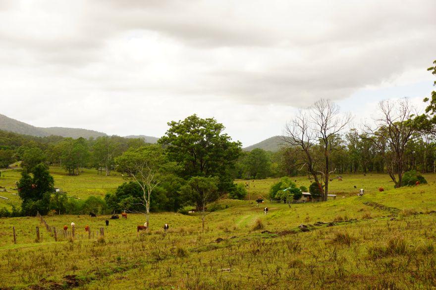Austrálie: život na farmě