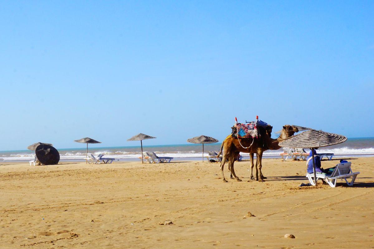 Maroko: Jak vypadá den dobrovolníka v surf centru