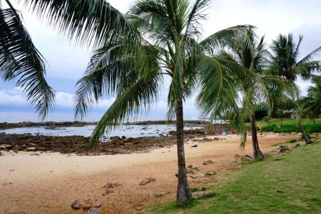 havajské ostovy oahu shark cove