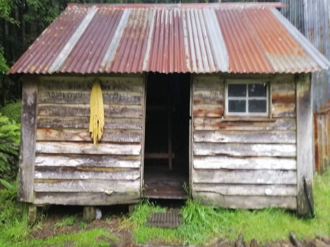 Te Araroa 2020 - sama na cestě pěšky skrz Nový Zéland Q&A